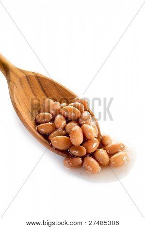 borlotti beans over spoon