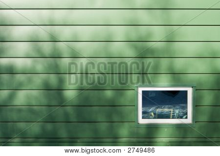 Window On Green Wall