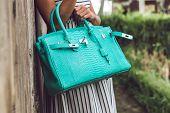Woman Hands With Luxury Handmade Snakeskin Leather Handbag. Python Snake Fashionable Handbag. Outdoo poster