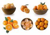 Set Of Fresh Mandarins. Ripe And Tasty Tangerines Isolated On White Background. Fresh Tangerines Wit poster