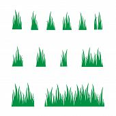 Grass Design Elements Set Isolated On White Background. Collection Green Grass, Grass Vector Image,  poster