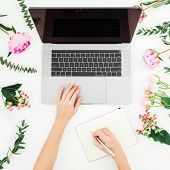 Girl Working On Laptop And Write In Diary. Office Workspace With Female Hands, Laptop, Pink Flowers  poster