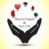 Concept Of Donating Organs To A Living Recipient, Concept Of Spreading Awareness About Organ Donatio poster
