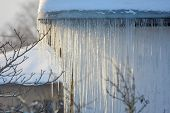 The Roof Of A House Covered With Snow And Icicles. Icicles Hanging From Roof. Winter In Latvia. Whit poster