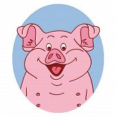 Pig Face. Pig Isolated. Pig Portrait On White Background, Happy Character Piggy. Cartoon Pig Looks O poster
