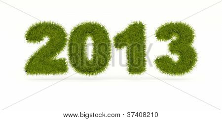 Green 2013 New Year sign