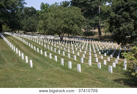 Acres Of Graves