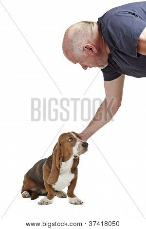 Man Reaches Down To Pat Basset Hound Puppy
