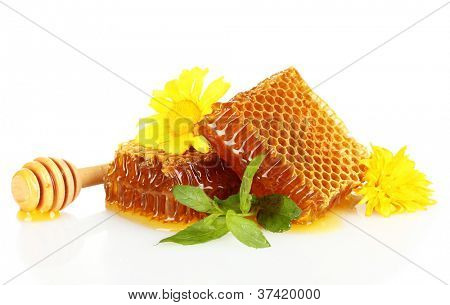 sweet honeycombs with mint and flowers isolated on white