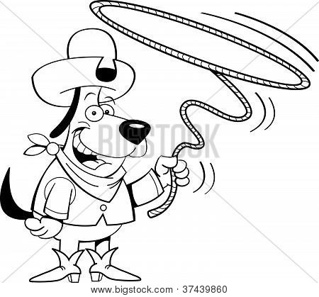 lariat dog
