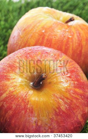 closeup of some delicous and fresh red apples on the grass