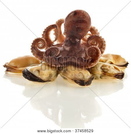 delicatessen cocktail of  Seafoods,: octopus ,mussels  isolated on the white background