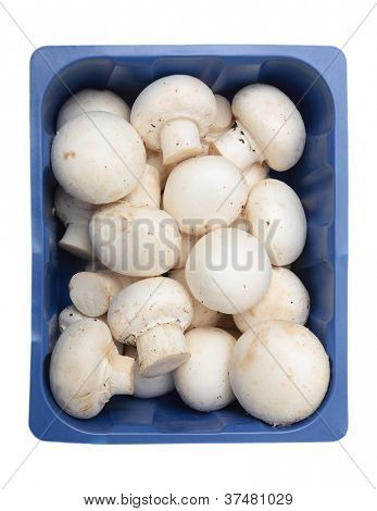 Button mushrooms, Agaricus bisporus, the common, champignon, crimini, white or table mushroom, in a supermarket tray, isolated on white