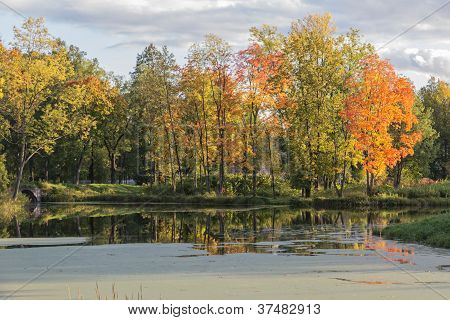 Scenic Autumn Landscape On The Pond