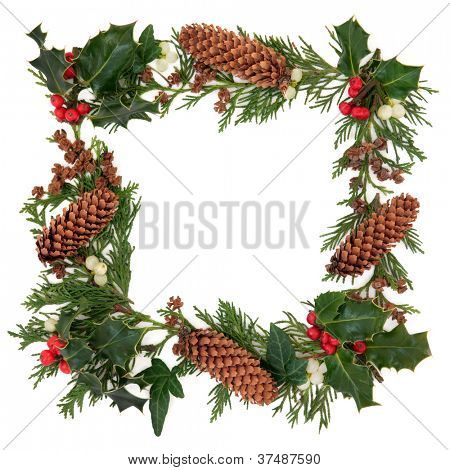 Winter and christmas decorative border of holly, ivy, mistletoe, cedar leaf sprigs and pine cones over white background.