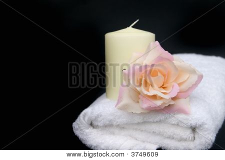 Bathroom Rose