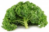 picture of kale  - freshly harvested whole kale cabbage on a white background - JPG