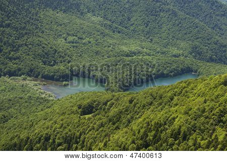 Biogradsko lake among the green forest