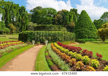 Beautiful Tropical Botanical Garden