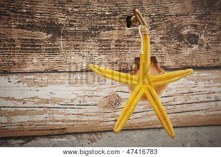 Yellow Starfish And Shell Key Holder