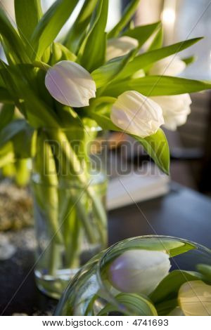 Bouquet Of  Tulip  In Vase Of Glass. Decoration Of Dining Table.