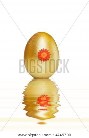 Golden Treasure Egg With Water Reflections Over White