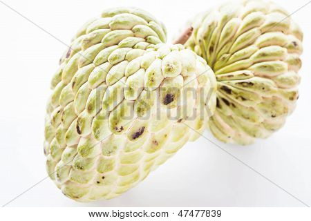 Couple Fresh Custard Apple With Geen Peel