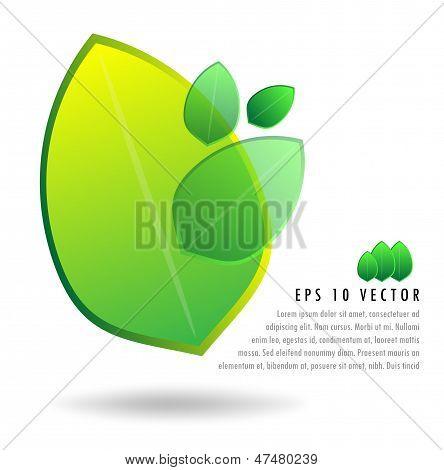 3D Green Leaf Illustration Set Background Concept
