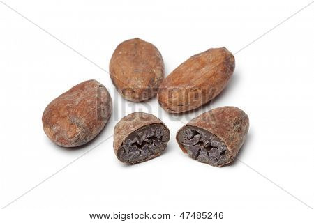 Cocao beans and cocao on white background