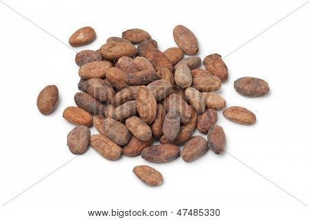 Cocao beans on white background
