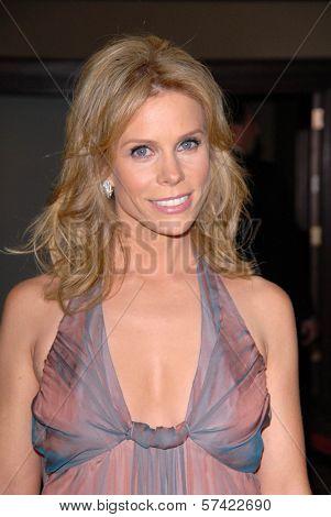 Cheryl Hines at the 62nd Annual DGA Awards - Arrivals, Hyatt Regency Century Plaza Hotel, Century City, CA. 01-30-10
