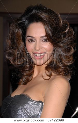 Mallika Sherawat at the 62nd Annual DGA Awards - Arrivals, Hyatt Regency Century Plaza Hotel, Century City, CA. 01-30-10