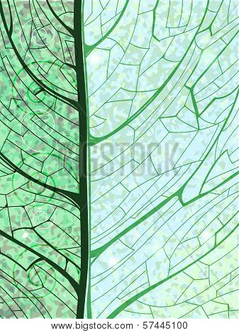 Hand Drawn Green Vertical Background With Pattern Of The Leaf Structure. Eps10