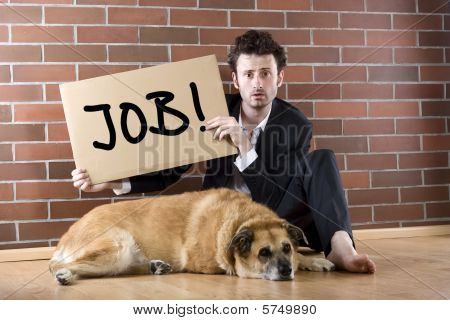 "Desperate Businessman Pleads With Sign ""need Job"""
