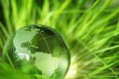 Glass Globe In Grass