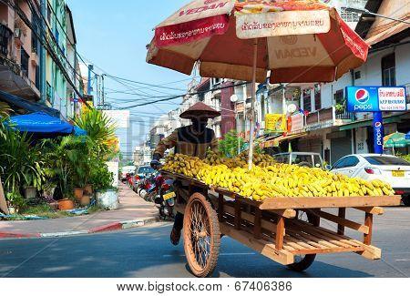 VIENTIANE, LAOS - 11 DEC,2013: Unidentified street vendor sells bananas in downtown of Laotian capital.
