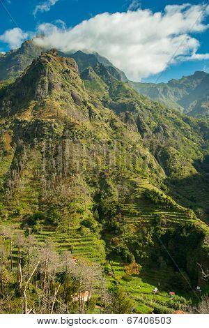 Mountain Terrace View