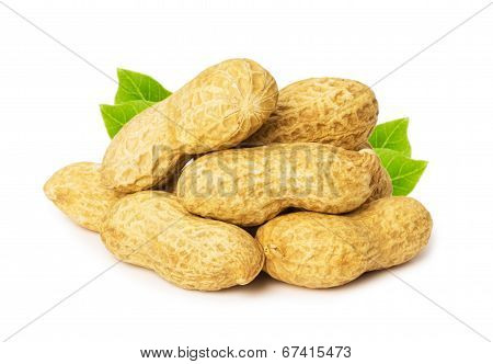 Peanut With Leaves Isolated On White Background
