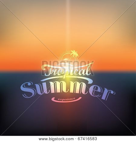 Summer calligraphic designs for tropical holidays | vector design