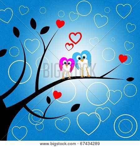 Heart Owls Indicates Valentine Day And Environment