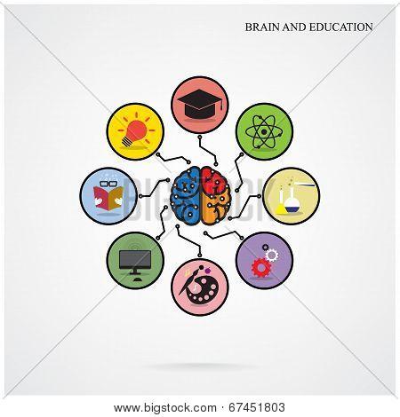 Infographic Creative Brain Template