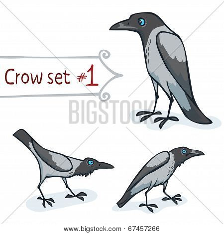Hooded Crow Set