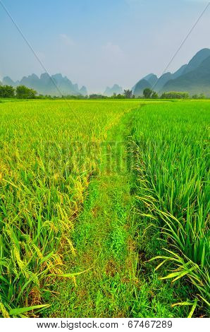 Li River Vertical Landscape In Yangshuo Guilin