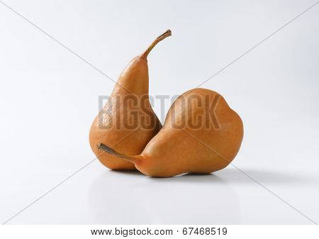 two fleshy brown pears