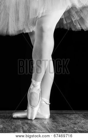 A ballet dancer standing on toes with rose petals on black background artistic conversion