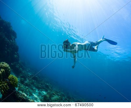 Underwater shot of the man moving towards the coral reef