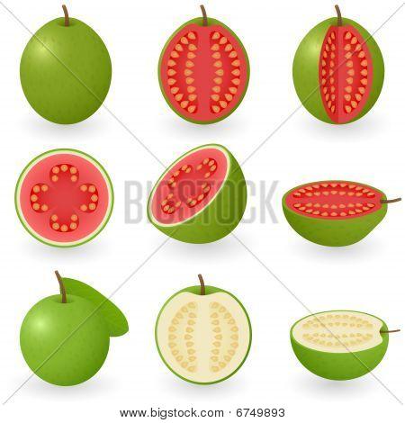 Icon Set Guava