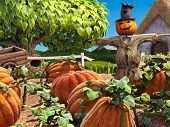 picture of scarecrow  - Halloween festive scene with scarecrow and pumpkin patch - JPG