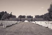 picture of world war one  - New British Cemetery world war 1 flanders fields - JPG