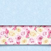 stock photo of english rose  - Blue card with pink and white English roses - JPG